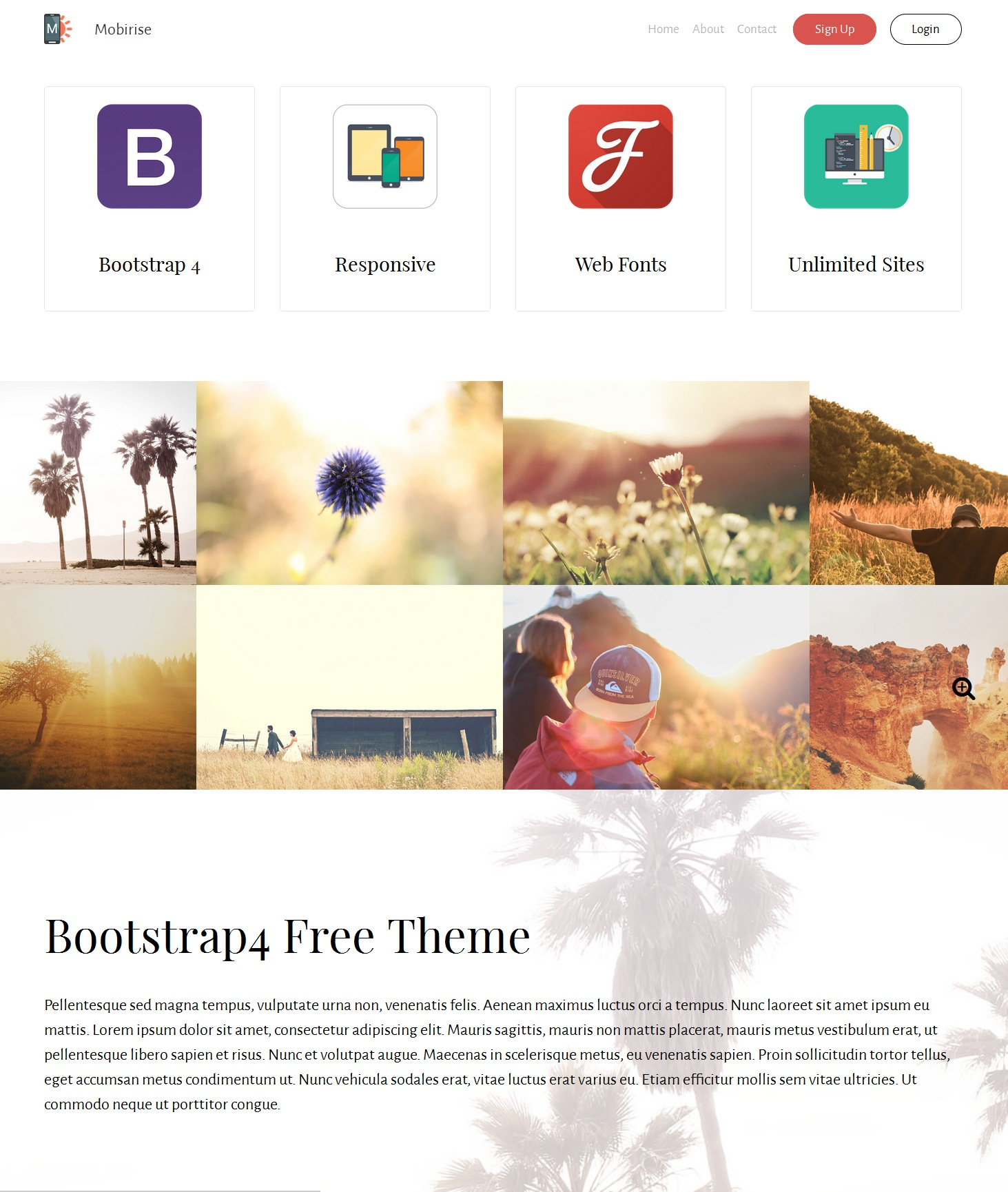 Responsive Bootstrap Video Theme