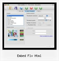 HTML Video Player Code embed flv html