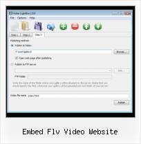 HTML5 Video Javascript Api embed flv video website